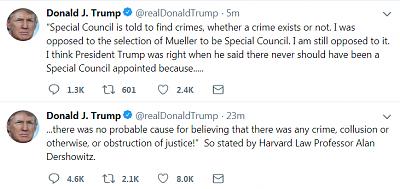 will-trump-good-president-trump.png