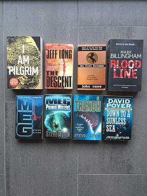 various-english-books-sale-thrillers-fiction-books-various-2.jpg