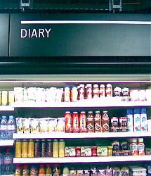 fail-day-diary-dairy.jpg
