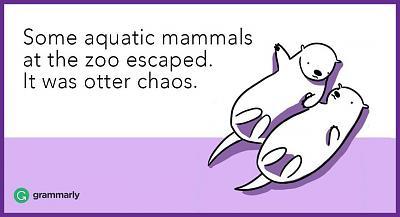 repertoire-terrible-jokes-i-challenge-you-otter.jpg