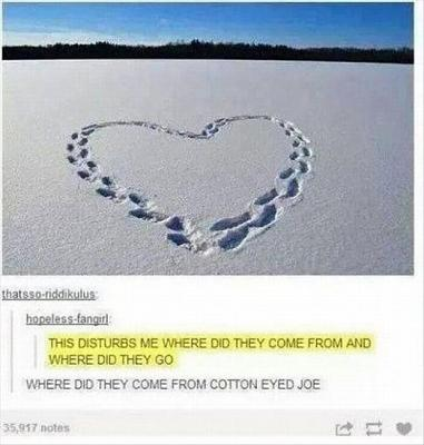 repertoire-terrible-jokes-i-challenge-you-where-did-they-come-cotton-eyed-joe.jpg
