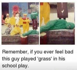 Name:  grass-schoolplay.jpg Views: 348 Size:  18.4 KB
