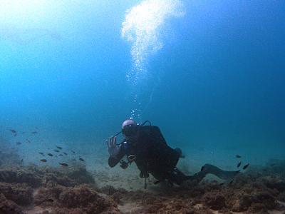 how-do-you-make-maltese-cross-diver3sized.jpg