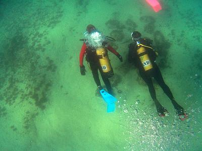 how-do-you-make-maltese-cross-diver8sized.jpg