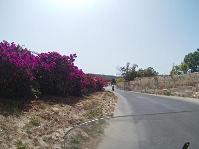 how-do-you-make-maltese-cross-hot_ride_on_the_pig_sized.jpg