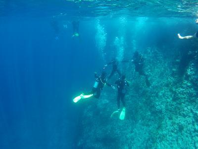 how-do-you-make-maltese-cross-divers.jpg