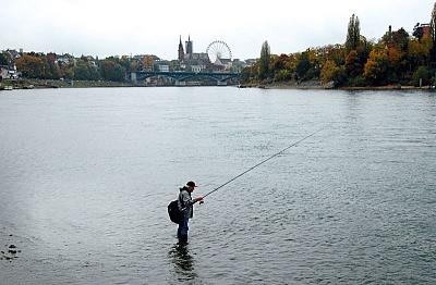 fresh-fish-near-basel-petriheil.jpg