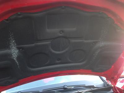 second-hand-mercedes-spots-under-hood-img_0896.jpg