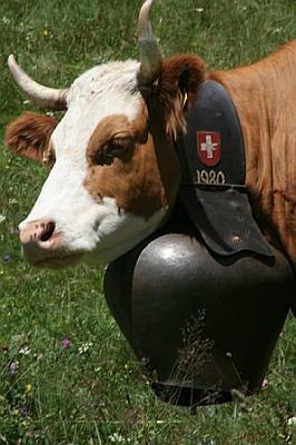 church-bells-cowbell.jpg