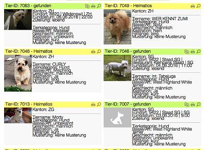small-dogs-tierdatenbank-screen-shot-2016-06-07-20.57.50.jpg