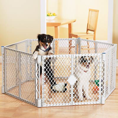Puppy playpen wanted sold anywhere in switzerland for Recinto in legno per cani
