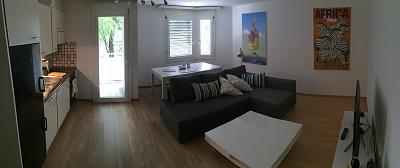 2-room-apartment-sublet-central-z-rich-22-jan-21-march-1-200-chf-per-month-1.jpg
