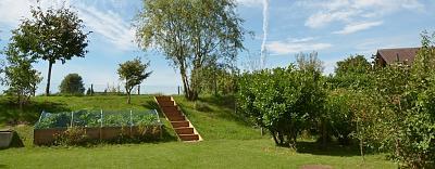 zh-sale-3-5-room-apt-big-garden-hochfelden-ad-garden-view.jpg