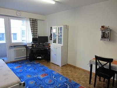 2-room-apartment-basel-5-minutes-bahnhof-sbb-livingroomfacingbalcony.jpg