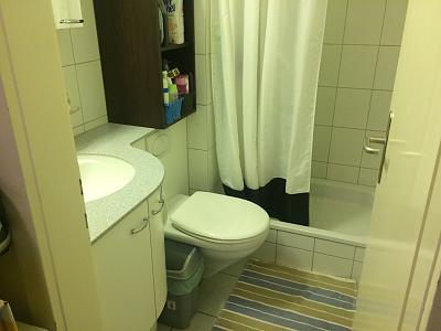 2-room-apartment-basel-5-minutes-bahnhof-sbb-bathroom.jpg
