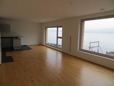 great-location-4-5-rooms-wadenswil-2881chf-1400-2-.jpg.jpg Views:94 Size:30.4 KB ID:122327