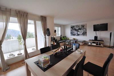 spacious-6-room-flat-adliswil-view-into-green-img_0451.jpg