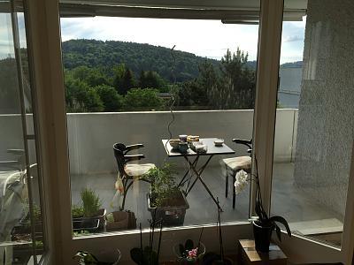 spacious-6-room-flat-adliswil-view-into-green-img_1195.jpg