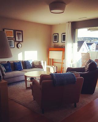 modern-3-5-room-apartment-dietikon-zurich-kanton-img_20170410_223428_017.jpg