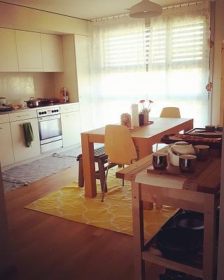 modern-3-5-room-apartment-dietikon-zurich-kanton-img_20170409_182237_553.jpg