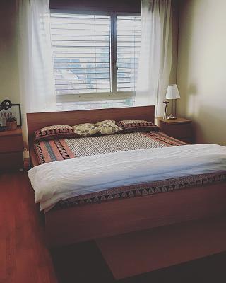 modern-3-5-room-apartment-dietikon-zurich-kanton-img_20170409_182049_947.jpg
