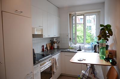 amazing-place-zurich-rent-between-kr7-8-dsc_7851.jpg