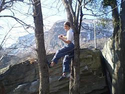 bouldering-ticino-cameraman-tree2.jpg