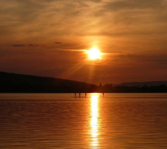 Name:  lake10 5-18-18(2).jpg Views: 582 Size:  78.7 KB