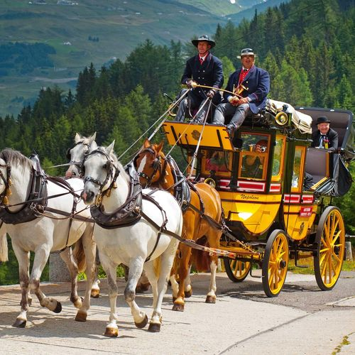 Name:  csm_Anreise_S_H_Horse-Carriage-Mountain-Trail_05_R_31daddc400.jpg