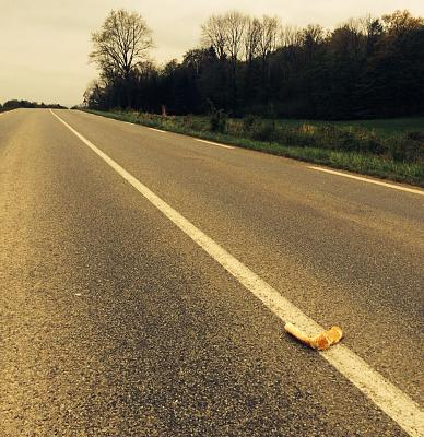 road-kill-france-french-roadkill.jpg