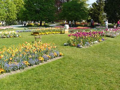 scenic-montain-train-journey-tulips-good-food-p1220176.jpg