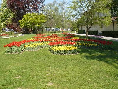 scenic-montain-train-journey-tulips-good-food-p1220186.jpg