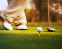 "A new group for golfers, whether you have a scratch handicap, or just want to get your ""platze reife"", we will organise events for all levels of players.    Some examples would be:  -..."